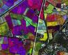 Immagine a falsi colori COSMO-SkyMed sulle aree agricole pavesi, elaborata da CNR-IREA (Copyright©e-GEOS an ASI / Telespazio company)